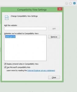 compatibilidade_internet_explorer