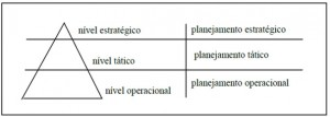 FIGURA 2 - Camada organizacionais